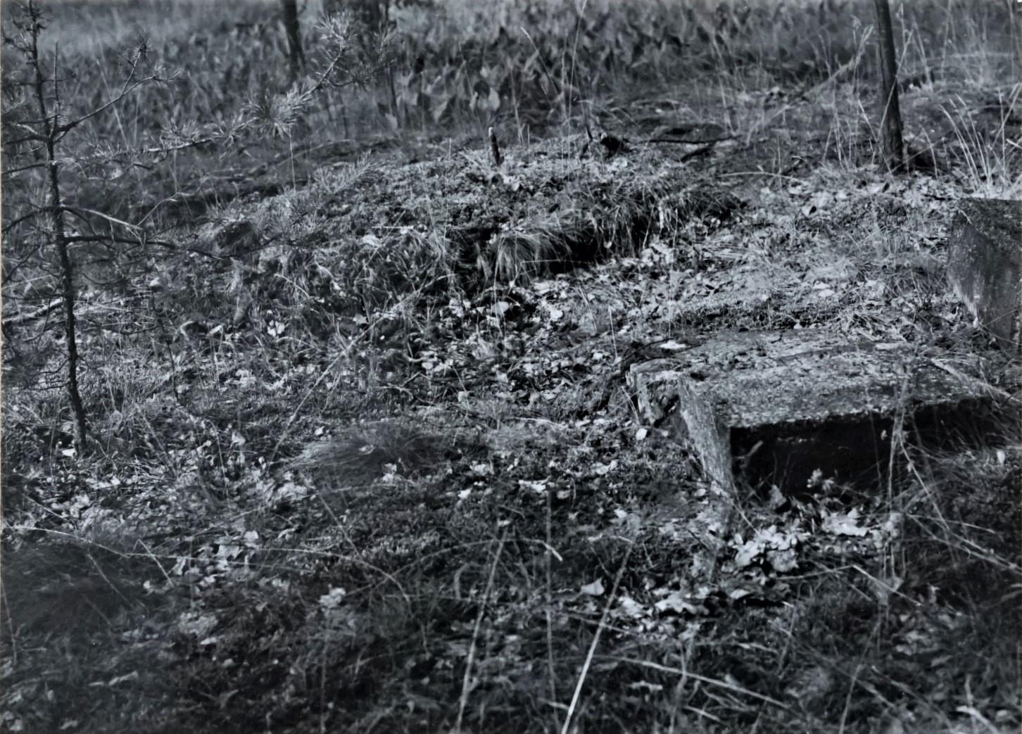 Zdjęcia z zasobów Wojewódzkiego Urzędu Ochrony Zabytków