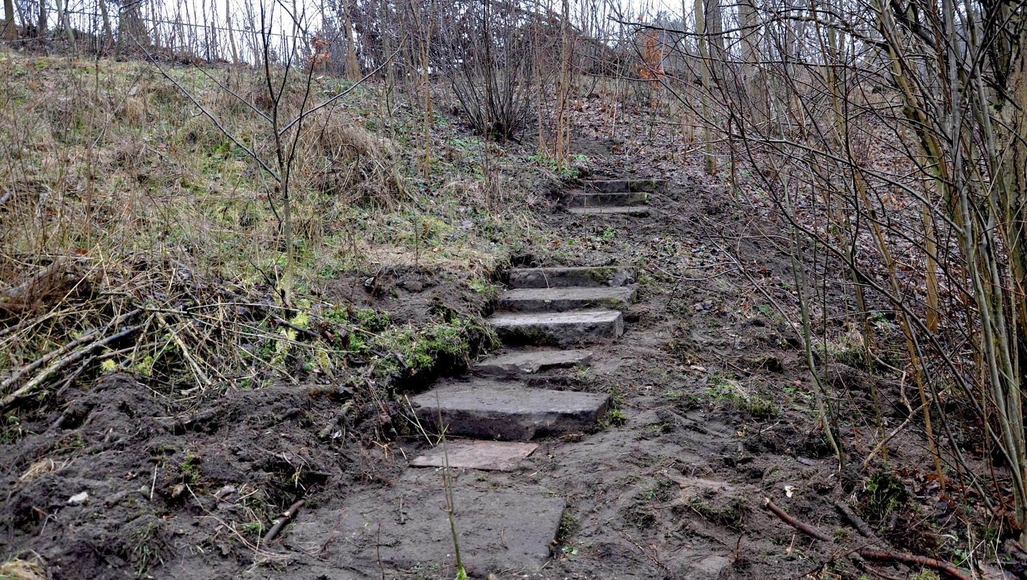 fot schody lustracja SKępe (6)